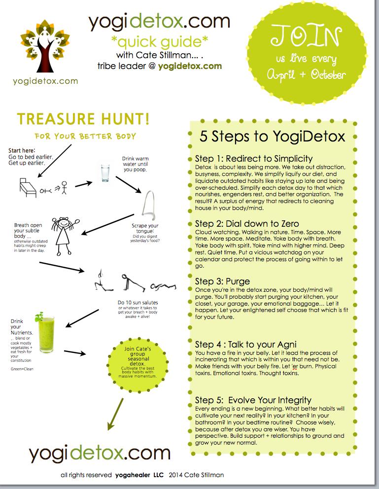 5 steps to Yogidetox cheatsheet